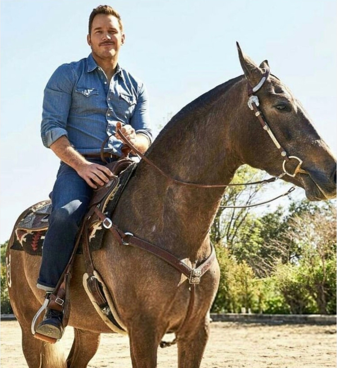 Chris Pratt riding a horse